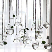 Beauty Hanging Glass Flower Planter Vase Terrarium Container Home Garden Decor