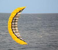 Huge 2.5m Outdoor Toys Dual Line Parafoil Sport Parachute Stunt Beach Kite USA