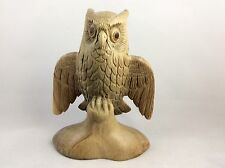 Owl Figuring Beautifully Hand Carved From Hibiscus Wood .