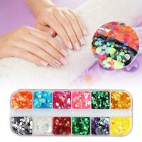 12 Box Boxed Nail Art Glitter Sequins Autumn Maple Leaf Color Nail Holographic