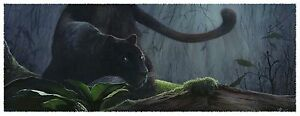 Heart of Darkness, Limited Edition Black Leopard Print, Released Feb 2012