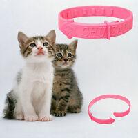 2X Adjustable Pet Collar Anti Flea & Tick Mite Louse Remedy Neck Rings for Cat