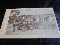 Cdv old photograph family pony cart garden by Owen at Salisbury 1870s