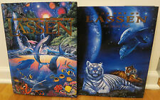 #B5 [Lot of 2] Art of Christian Riese Lassen Secret Path Hardback Book Ocean Euc