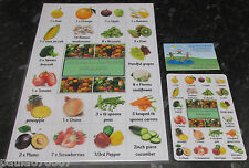 My Healthy Eating Guide, A4 Poster OR Handy size cards 13 cm x 9 cm FULL Colour
