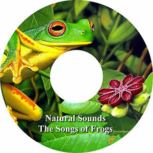 Natural Sounds The Songs of Frogs CD Relaxation Help Sleep Stress Anxiety Relief