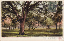 * NEW ORLEANS - Old Duelling Ground City Park 1907