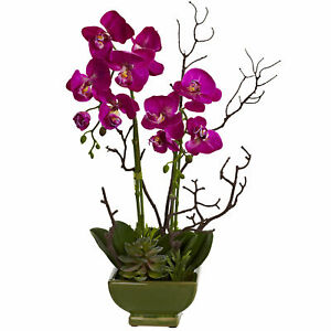 """Nearly Natural Orchid & Green Succulent Arrangement Flower Home Decoration 21"""""""