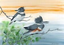Kingfishers art print
