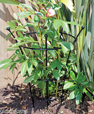 Extra Large Herbaceous Plant Support / Peonies Support