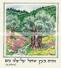 Judaica,Art,like a tree planted by streams,high quality print, size 4.1x4.8''