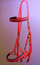 Stunning Padded Brow & Nose Halter Bridle Matt Hot Pink - Shetland