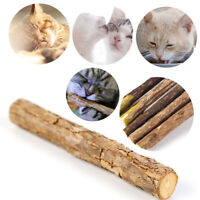 5x Natural Catnip Wood Teeth Chew Stick Pet Cat Snack Sticks Teeth Cleaning Toy