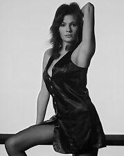 """Jacqueline Bisset 10"""" x 8"""" Photograph no 15"""