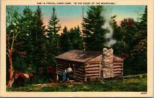 VINTAGE TYPICAL CABIN CAMP IN THE HEART OF THE MOUNTAINS POSTCARD PC POSTED
