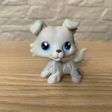 Rare Littlest Pet Shop LPS Hasbro Authentic Gray White Collie Puppy Dog toy