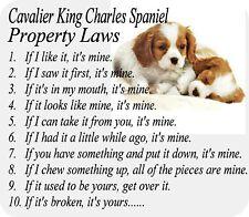 Mousepad - Cavalier King Charles Spaniel Dog Computer Desktop / Laptop / Gaming