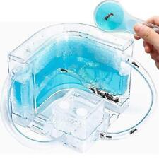 Clear Plastic Ant Farm Formicarium Display Case Castle Acrylic Gel Feeding Kit