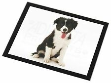 Border Collie Puppy Black Rim Glass Placemat Animal Table Gift, AD-CO45GP