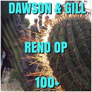 Echinopsis   -   RENO  OP.   100+.    Dawsons & Gill      Cactus.