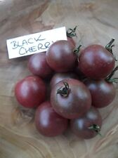 Tomato Black Cherry - 10+ seeds - SWEET and RICH!