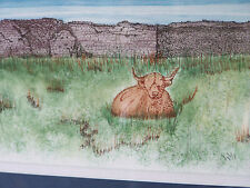 """Original Watercolour & Ink Picture """"Highland Cow at Duncansby"""" BN"""