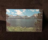 Postcard Teton Range Over Jackson Lake Mountains Tree Snow Unposted