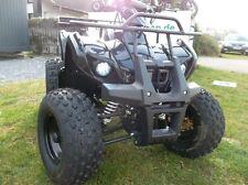 Quad 125 ccm Dirtbike Pitbike 4 Takt Motor Motocross Quad ATV 8 Zoll