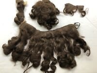 Theda Bara Wig - 4 Pieces With Letter Of Provenance From Joan Craig