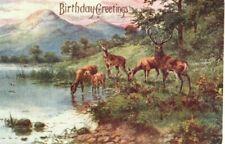 VINTAGE BIRTHDAY GREETING postcard:  HERD OF DEER