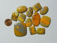 Bumble Bee Jasper 308 Carats 12 Cabs Very Interesting Patterns Bright Yellow