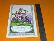 CHROMO 1900-1920 BON POINT ECOLE PLANTE MEDICINALE MAUVE MALVA SYLVESTRIS