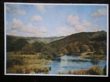 POSTCARD F NEWENS - RYDALL WATER AFTER A STORM - MEDICI SOC