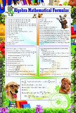 laminated ALGEBRA MATHMATICAL FORMULAS poster   educational teaching math school
