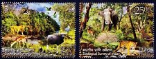 Tiger, Dear, Elephant, Peacock, Lion, Water Birds, Zoological Survey India MNH
