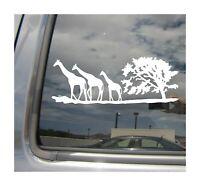Giraffe Family - Safari Africa - Auto Window Quality Vinyl Decal Sticker 01085