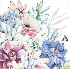 3 x Single Paper Napkins For Decoupage Tissue Flowers Echeveria Succulents M226