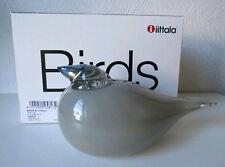 Iittala OIVA TOIKKA  Art Glass Bird,  Gray Jay,  New In Box