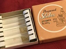 Vintage Prepared Slides, Specimen 2 ea, Blank 2 ea (s/b 4) Japan In Original Box