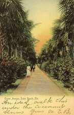1902 PALM BEACH FL Ocean Avenue Rotograph postcard