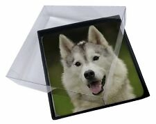 4x Siberian Husky Dog Picture Table Coasters Set in Gift Box, AD-H65C