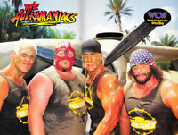 Hulkamaniacs Sting Vader Hulk Hogan Randy Savage Wrestling Photo 8x6 Inch WCW