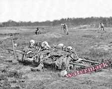 Photograph of Civil War Fallen Grave Diggers Cold Harbor Virginia 1865  8x10