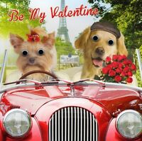 Be My Valentine Dogs In Car Valentine's Day Greeting Card Gogglies Cards