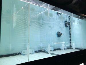 RA Acrylic Aquarium Divider Kit + Suction Cups 10/20L/20H/29/40B/55/75gal Tank