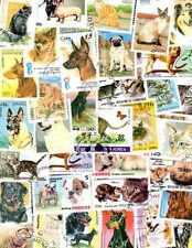 Chats et Chiens - Cats and Dogs 500 timbres différents oblitérés