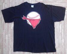 Quad City River Bandits Baseball Scarf Logo Shirt ~ Men's XL ~ Houston Astros