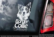 English Border Collie - Car Window Sticker - Sheepdog Dog on Board Sign - TYP3