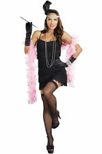 Dreamgirl Flapper Costumes