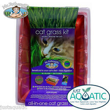 FREE SHIP Mr Fothergill's Cat Grass Sprouting Seed Raiser Kit Dactylis glomerata